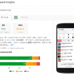 PageSpeed Insightの詳細結果